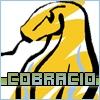 Nachrüstung Gas - last post by cobracio